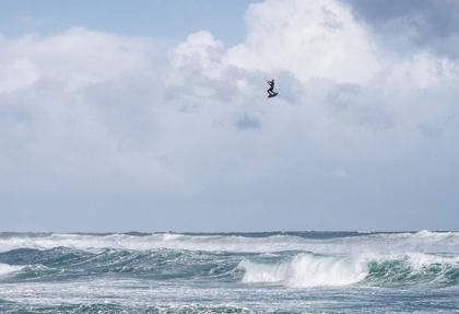 jumping-seminar-gokite-kitesurfing-coaching